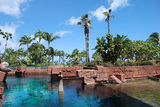 Backyard of Atlantis resort