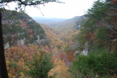 Cloudland Canyon 2012