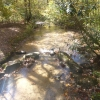 A creek